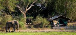 Flatdogs Camp, South Luangwa, Zambia