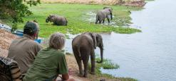 Goliath Safaris Tented Camp, Mana Pools, Zimbabwe