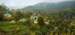 Gorilla Safari Lodge, Bwindi, Uganda