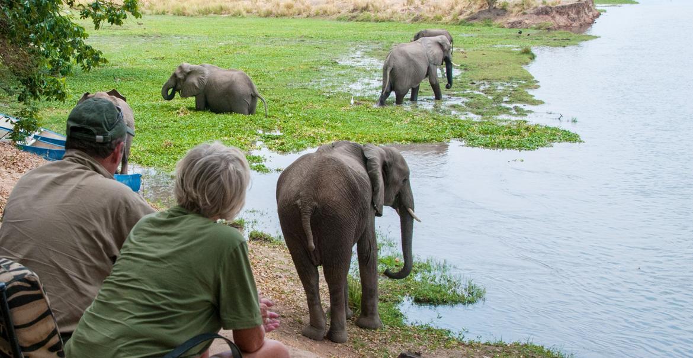 Stretch Ferreira Safaris Tented Camp, Mana Pools, Zimbabwe