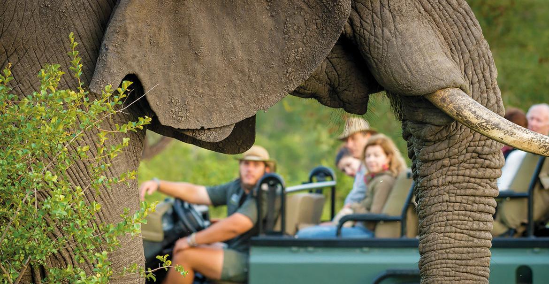 Walk on the Wild Side, 17-daagse self-drive Zuid-Afrika