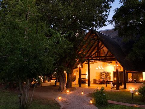 Ngala Safari Lodge, Timbavati, South Africa
