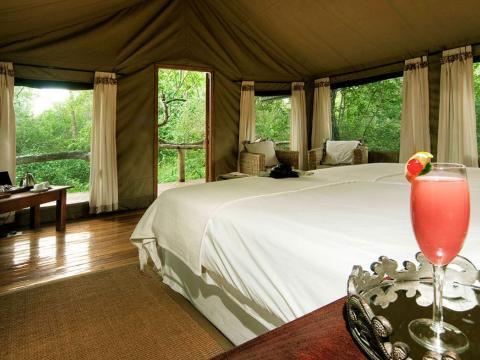 Royal Tree Lodge, Maun, Botswana