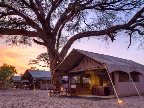 Savute Under Canvas, Chobe, Botswana