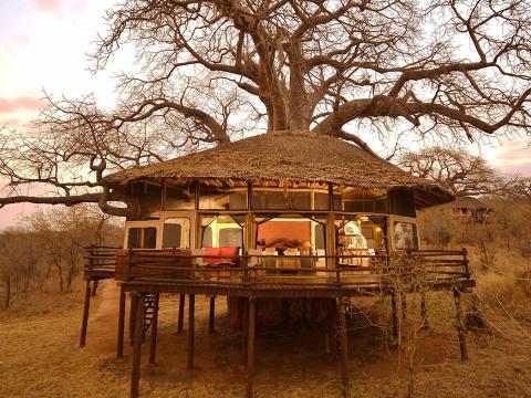 Tarangire Treetops, Tanzania
