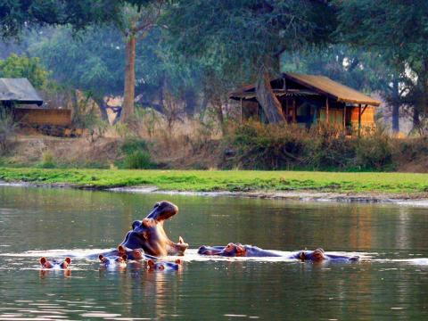 Chongwe River Camp, Lower Zambezi, Zambia