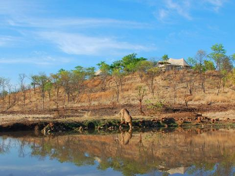 The Elephant Camp, Victoria Falls National Park, Zimbabwe