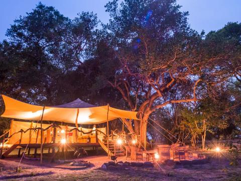 Fig Tree Bush Camp, Kafue, Zambia