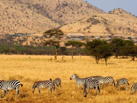 Kubu Kubu Tented Camp, Serengeti, Tanzania