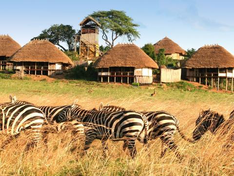 Apoka Safari Lodge, Kidepo Valley, Uganda
