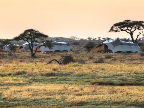 Namiri Plains, Serengeti, Tanzania