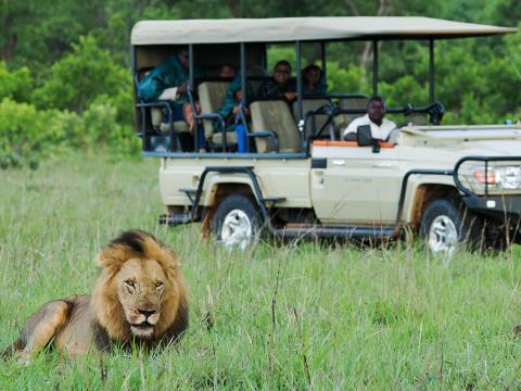10-daagse fly-in safari Bush & Beach - Zambia & Malawi
