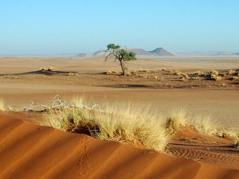 Exploring Namibia, 15-daagse self drive