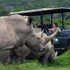 Family Cape Adventure, 21-daagse self drive Zuid-Afrika