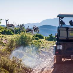 Family Cape to Sibuya, 16-daagse self drive Zuid-Afrika